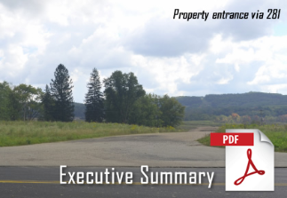 Click here to view Executive Summary